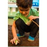 procuro por berçário e escola infantil com educação pré escolar Guará